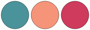 ColorCombo16550