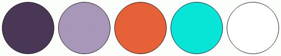 ColorCombo16551
