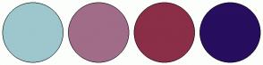 Color Scheme with #9DC7CC #A16C88 #8B2E47 #270E5E
