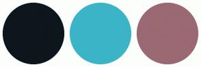 Color Scheme with #0D161C #3CB4C7 #9A6972