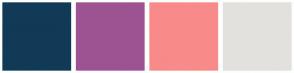 Color Scheme with #113A57 #9D5392 #F98A8A #E3E1DE
