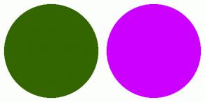 Color Scheme with #336600 #CC00FF