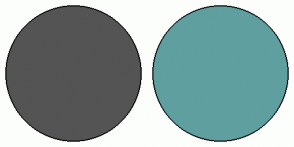 Color Scheme with #545454 #5F9F9F