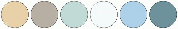 ColorCombo14818