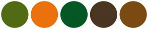 Color Scheme with #516B13 #EB710E #045823 #4A3621 #7B4A12