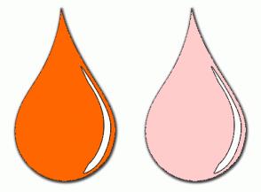 Color Scheme with #FF6600 #FFCCCC