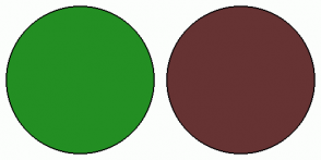 Color Scheme with #238E23 #663333