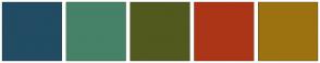 Color Scheme with #214C63 #458267 #51591F #AD3517 #9C7210