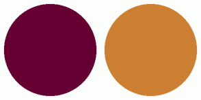 Color Scheme with #660033 #CD7F32