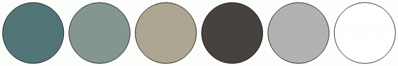 ColorCombo15096