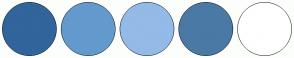 Color Scheme with #31659C #639ACE #94BAE7 #4A79A5 #FFFFFF