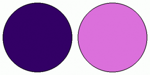 Color Scheme with #330066 #DB70DB
