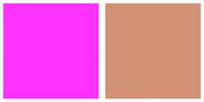 Color Scheme with #FF33FF #D19275