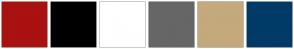 Color Scheme with #AA1111 #000000 #FFFFFF #666666 #C4A97C #003A66