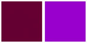 Color Scheme with #660033 #9900CC