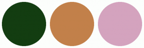 Color Scheme with #133D11 #C2804A #D4A3BE