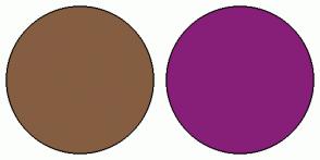 Color Scheme with #855E42 #871F78