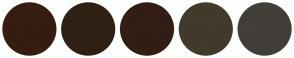 Color Scheme with #361D10 #2E2114 #321E14 #423A2A #423E38
