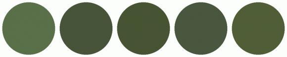 ColorCombo4737