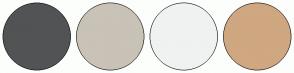 Color Scheme with #525354 #C9C2B7 #F0F2F2 #CFA780