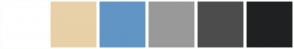 Color Scheme with #FFFFFF #E8D0A9 #6195C5 #999999 #4C4C4C #1F2021