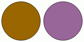 Color Scheme with #996600 #996699