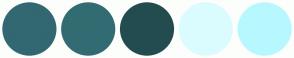 Color Scheme with #326872 #326C72 #234C50 #DBFCFF #B7F8FF