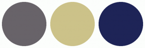 Color Scheme with #686369 #CCC289 #1E2457