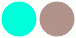 Color Scheme with #00FFDB #B1938B
