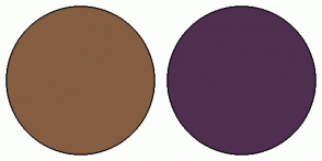 Color Scheme with #855E42 #4F2F4F