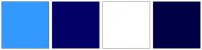 Color Scheme with #3399FF #000066 #FFFFFF #000044