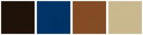 Color Scheme with #1F1209 #003366 #834C24 #CAB88F