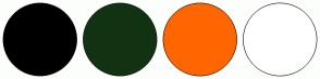 Color Scheme with #113322 #FFE8D3 #FF6600