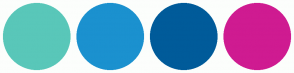 Color Scheme with #59C7B9 #1B91CF #005B9A #CF1B91