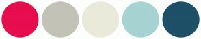 Color Scheme with #E60E4F #C3C2B7 #EAEADA #A6D3D2 #1E5067