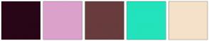 Color Scheme with #280617 #DCA1CB #683C3C #22E3BB #F5E1C9