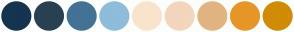 Color Scheme with #153450 #294052 #447294 #8FBCDB #F8E4CC #F4D6BC #E1B481 #E79629 #D08C07