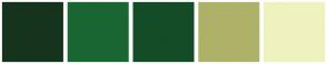 Color Scheme with #16331E #1A6633 #134C26 #AEB268 #EFF2BF