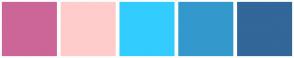 Color Scheme with #CC6699 #FFCCCC #33CCFF #3399CC #336699