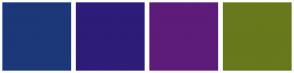 Color Scheme with #1C3879 #2E1C79 #5D1C79 #67791C
