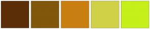 Color Scheme with #5C2E08 #80570B #C97F10 #D1D147 #C5F01A