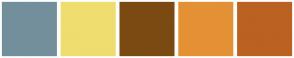 Color Scheme with #738F9B #EFDD6F #7B4A12 #E49135 #BA6222