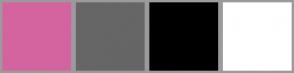 Color Scheme with #D3649F #666666 #000000 #FFFFFF