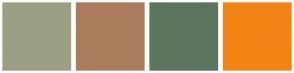Color Scheme with #9C9F84 #A97D5D #5C755E #F28416