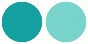 Color Scheme with #16A1A1 #79D4CB