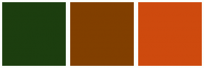 Color Scheme with #1C3E0F #813F00 #CE4A0E