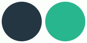 Color Scheme with #243743 #28B78D