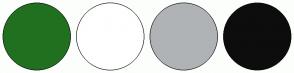 Color Scheme with #217020 #FFFFFF #AFB3B6 #0D0D0D