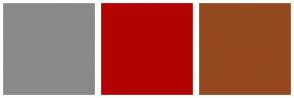 Color Scheme with #898989 #B20303 #94481E