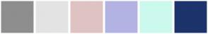 Color Scheme with #8E8E8E #E3E3E3 #DFC3C3 #B3B3E3 #CCF9ED #1C336B
